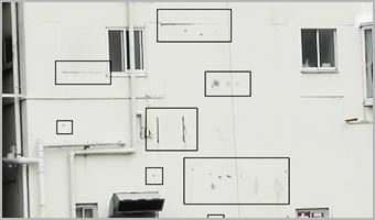 専用画像測定ソフトで画像を取り込み自動計測